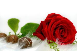 Růže a pralinky